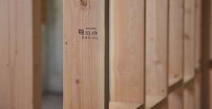 pine wood austin
